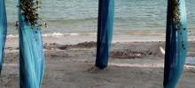 gazebo para la playa con lilis blancas y azul