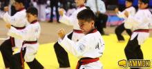 Escuelas de taekwondo para niños y jóvenes