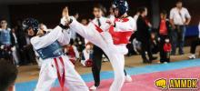 Copa de Taekwondo
