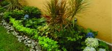 jardinería+, mantenimiento+ jardines+, diseño+ jardines+, paisajismo+