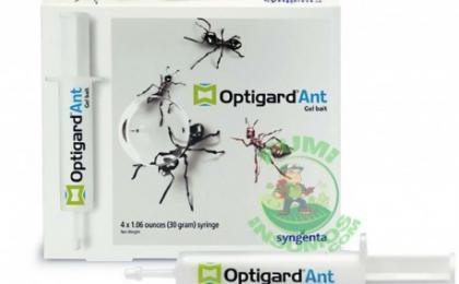 Es un efectivo hormiguicida en presentación de jeringa de 30 gr.